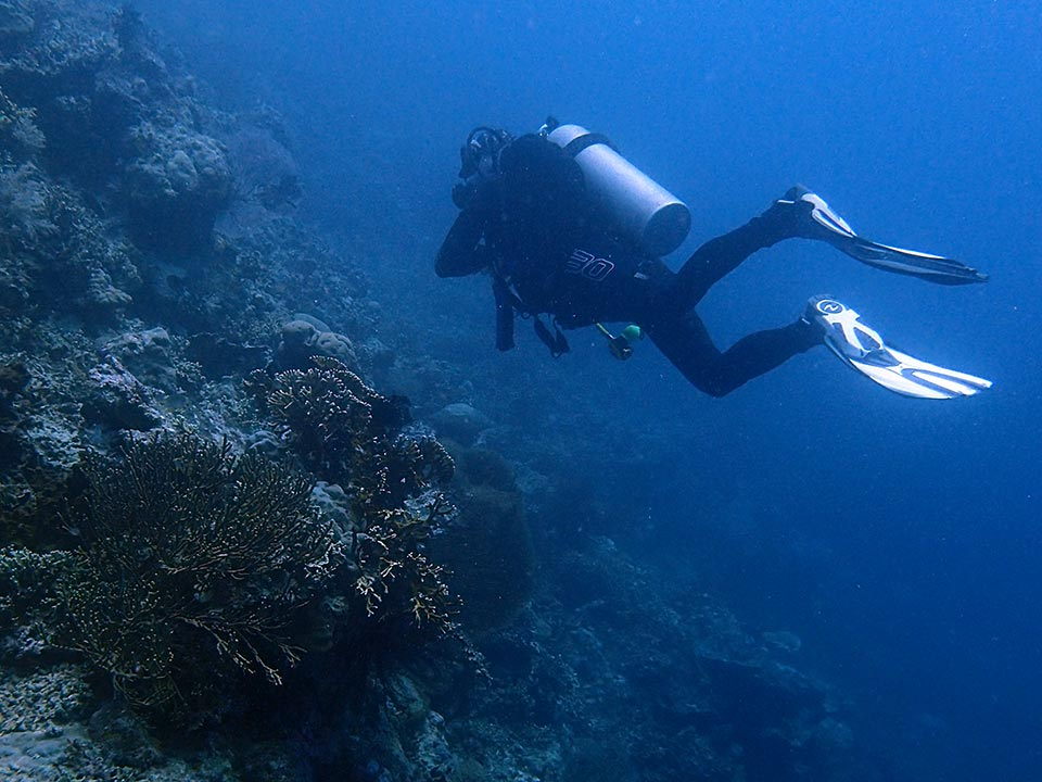 Diving Packages HH4