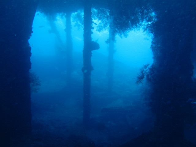 Diving Packages HH6